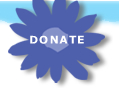 Donate to Hope in Bloom